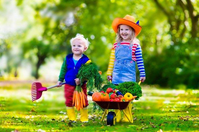 Festa a tema fattoria per bambini a Roma
