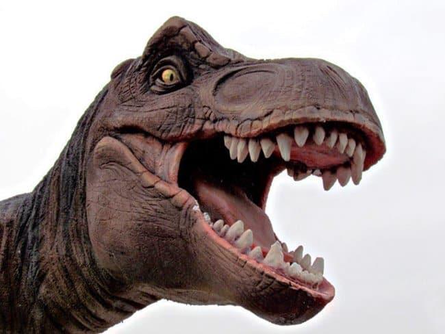 Festa a tema dinosauri per bambini a Roma